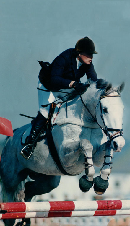 Horse Boarding Training Coaching Lessons Showing